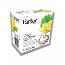 Citrinų ir moringos skonio žalioji arbata, 20 x 2g